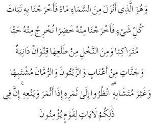 QS Al Anam 99